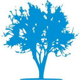 tree-21-256