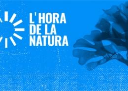 Cartell pel Dia Mundial del Medi Ambient