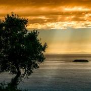 natura al mar Mediterrani