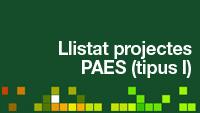 Llistat Projectes PAES I